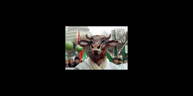 La maladie de la vache folle en train de disparaître - La Libre