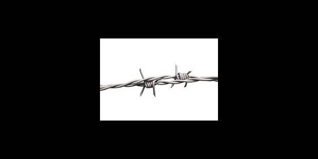 Amnesty en fait-elle assez, ou trop ? - La Libre