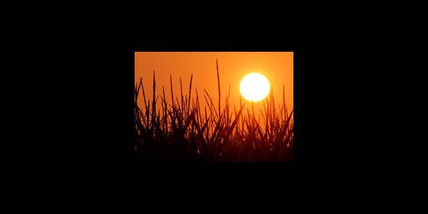 """Le Soleil, une étoile """"orpheline"""" comme les autres - La Libre"""