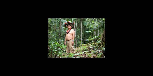 La lutte contre la déforestation passe par Google - La Libre