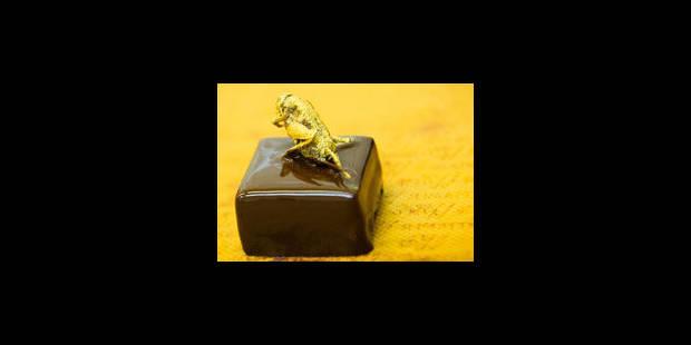 Des chocolats aux insectes - La Libre