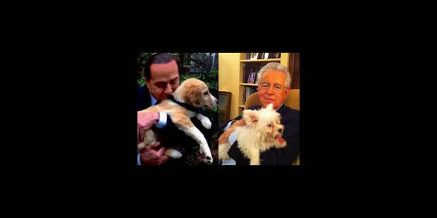 La bâtarde de Berlusconi contre le chien de race de Monti - La Libre