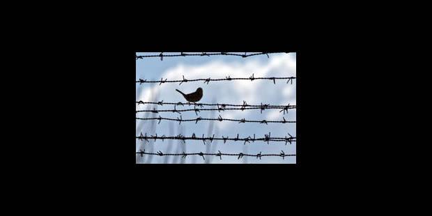 """""""Les prisons risquent de se transformer en bombes à retardement"""" - La Libre"""
