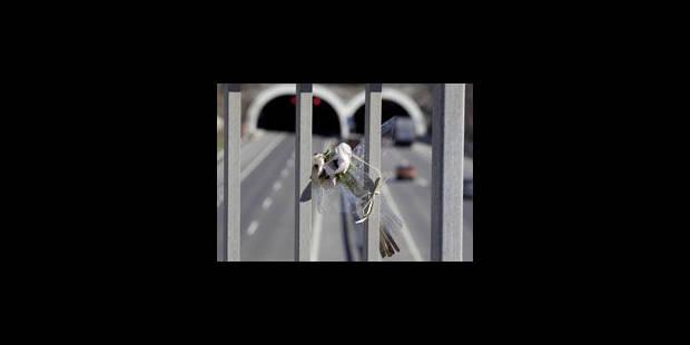Accident de Sierre: inattention ou malaise du chauffeur - La Libre