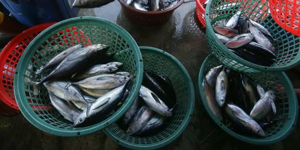 Moins de surpêche européenne en 2012 - La Libre