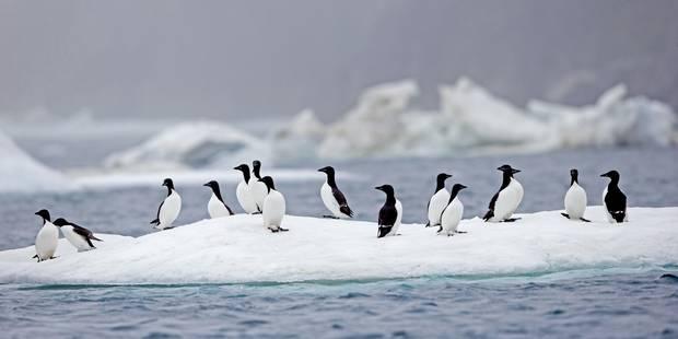 Que sait-on réellement sur l'évolution du climat ? - La Libre