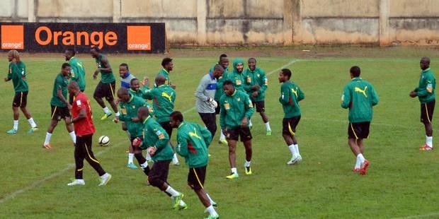 Le Cameroun se qualifie pour sa 7e Coupe du monde - La Libre