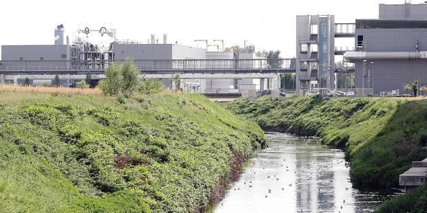 Bruxelles entre engrais et déchets - La Libre