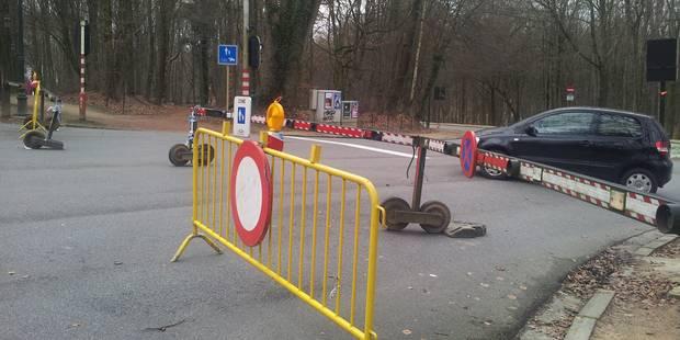 """Bruxelles : """"Le Bois de la Cambre est accidentogène"""" - La Libre"""