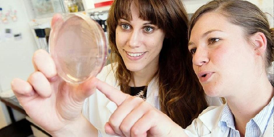 Les bactéries font de la résistance et l'UCL contre-attaque - La Libre