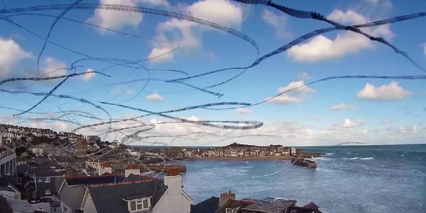La trajectoire des oiseaux en vol magnifiée dans une vidéo - La Libre