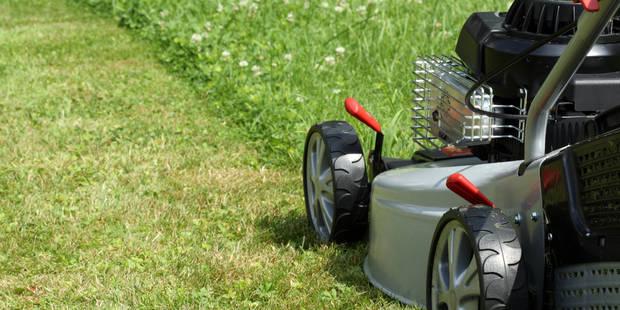 Tondre sa pelouse le dimanche matin est autorisé dans la majorité des communes wallonnes - La Libre