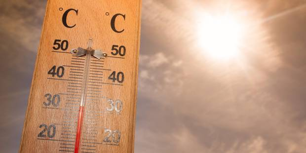 La vague de chaleur et ses conséquences sur la Belgique - La Libre