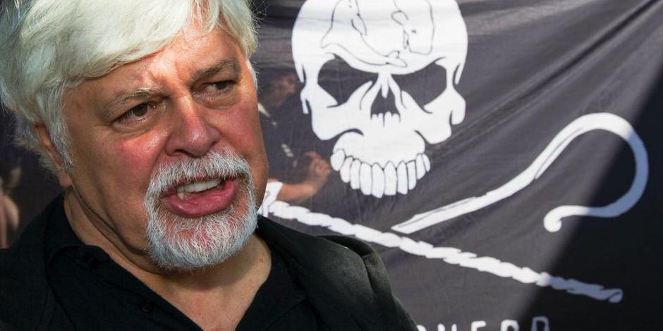 Paul Watson, le défenseur des baleines traqué par Interpol - La Libre