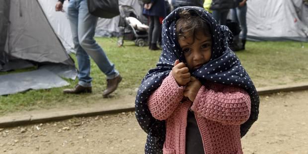 La N-VA et l'Open VLD veulent des allocations familiales progressives pour les demandeurs d'asile - La Libre