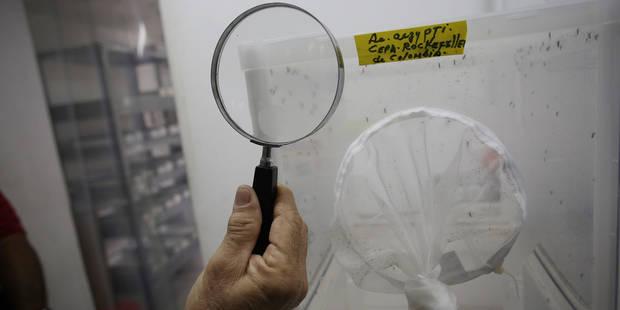 Non, Zika n'est pas le Sida - La Libre