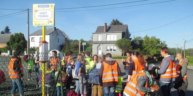 Namur : Loyers se met au Pédibus - La Libre