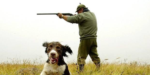 Plus de chasseurs mais moins d'accidents de chasse - La Libre