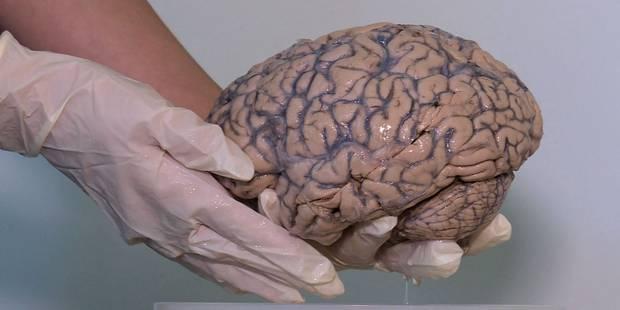 Un bataillon de cerveaux au service de la psychiatrie - La Libre
