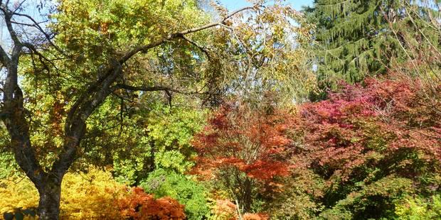 Voici pourquoi l'automne commence le 22 septembre 2016 - La Libre