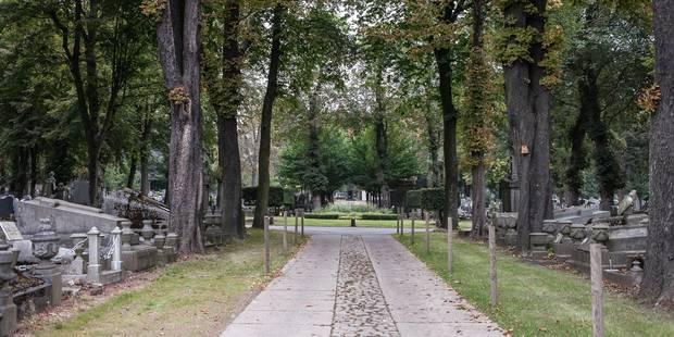 Liège: Des cimetières plus verts - La Libre