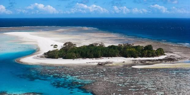 Grande barrière de corail: mise en chantier de la mine géante Adani dès mi-2017 - La Libre