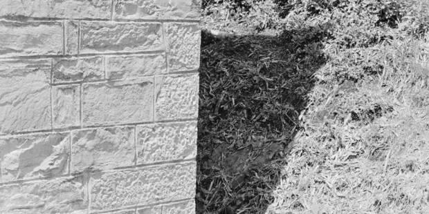 Un prix pour ce « jardin » banal devenu si poétique - La Libre