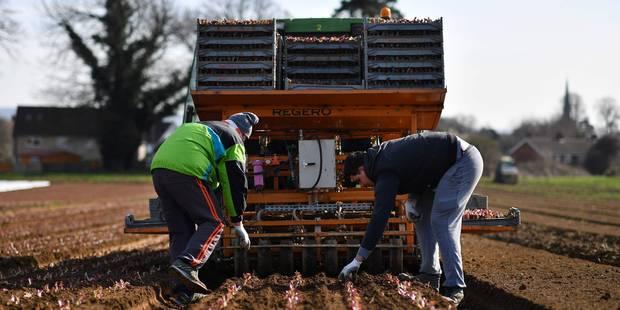 La politique agricole doit servir les populations (OPINION) - La Libre