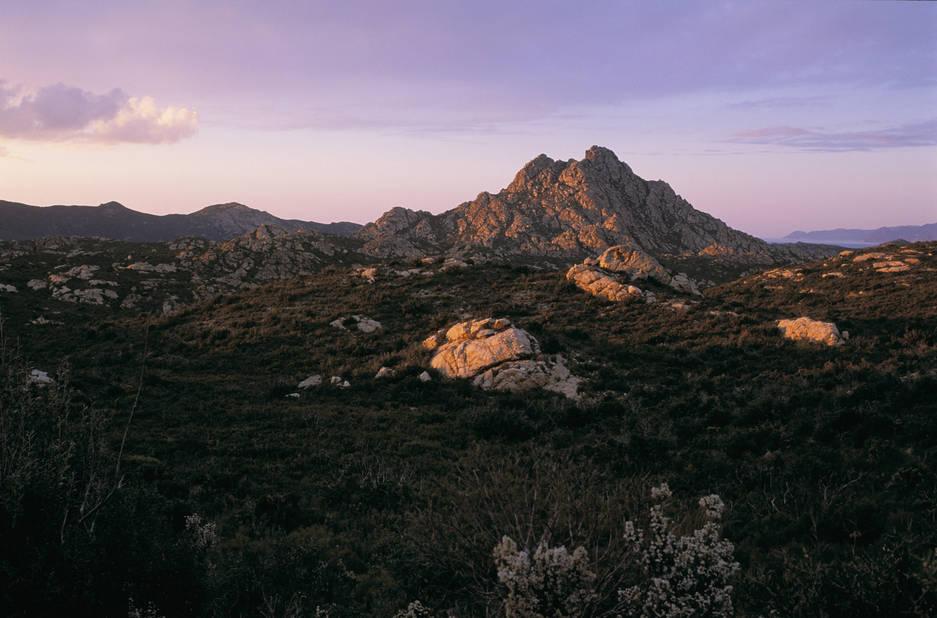 Excursion dans limpressionnant Désert des Agriates avec vue sur le Monte Genova au soleil couchant.