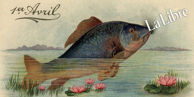 Dix poissons de La Libre depuis 1950 - La Libre