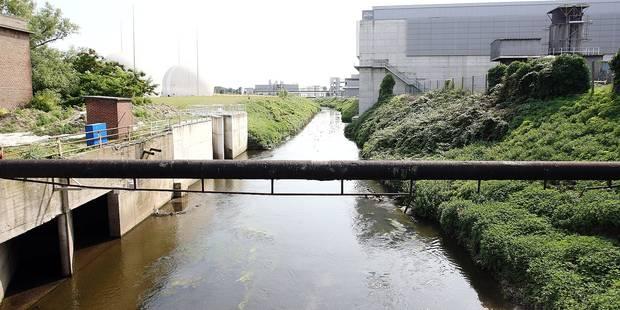 Bruxelles-Ville veut limiter la pollution de la Senne - La Libre