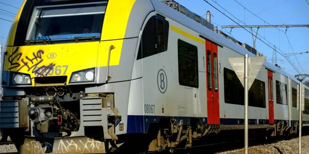 Un train en panne avec 350 passagers bloqués pendant une heure entre Louvain et Liège - La Libre