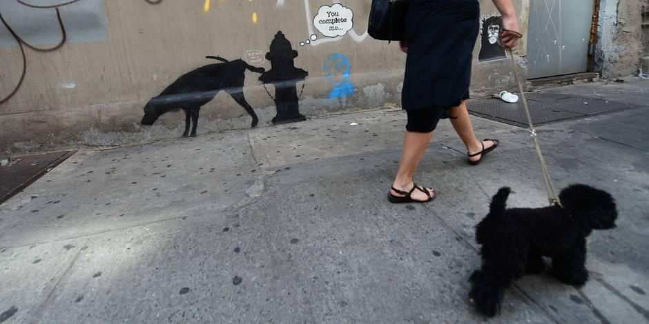 Un lapsus relance les hypothèses sur la véritable identité de Banksy