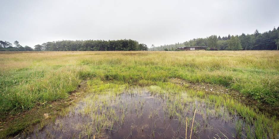 Le parc naturel des Sources voit le jour entre Stoumont et Spa - La Libre