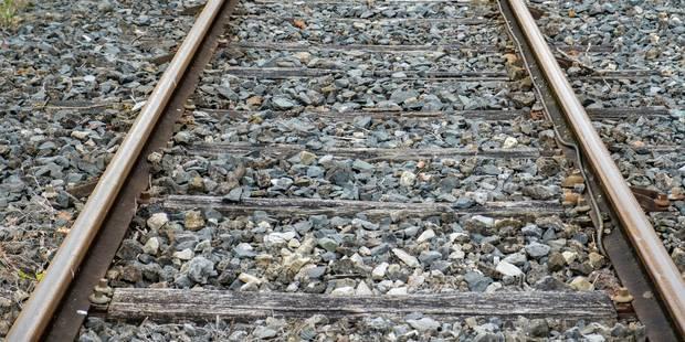Pas de trains entre Tongres et Hasselt pendant 72 heures en raison de travaux - La Libre