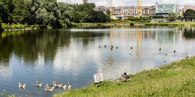 Une ordonnance de police pour limiter les nuisances autour du lac de Louvain-la-Neuve - La Libre