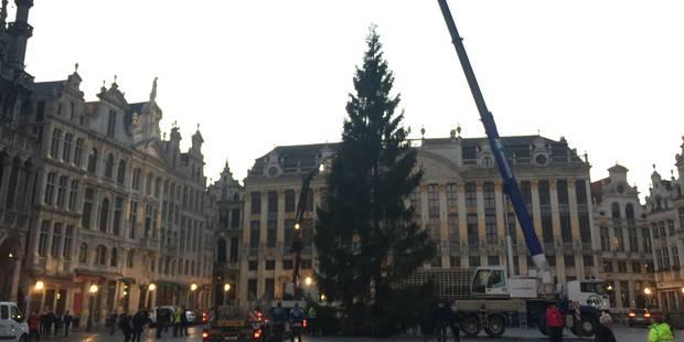Le sapin de Noël est arrivé sur la Grand-Place (PHOTOS et VIDEO) - La Libre