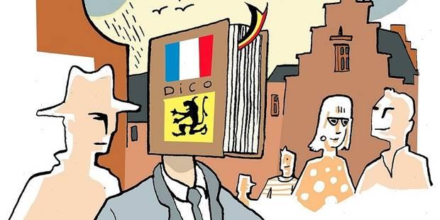Apprenez le néerlandais, oui, mais lequel ? (OPINION) - La Libre