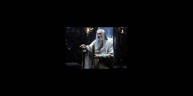 """""""Le Seigneur des anneaux"""" à la poursuite d'Harry Potter - La Libre"""