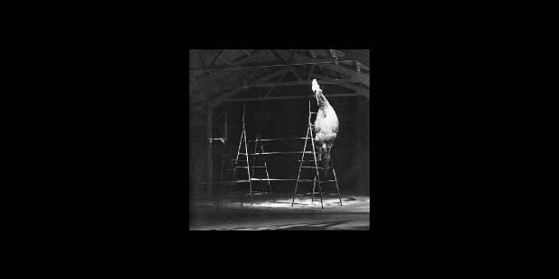 L'art et la poésie au milieu des vaches - La Libre