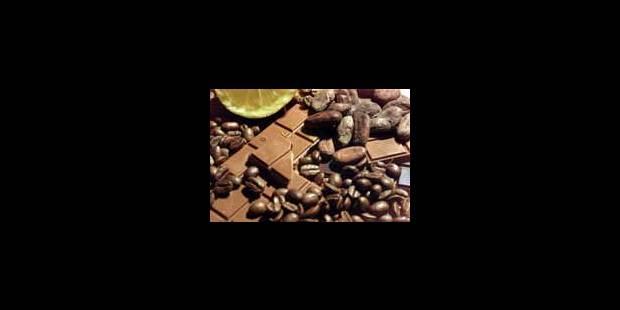 Le cacao, or brun des paysans? - La Libre