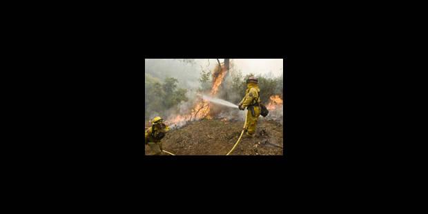 Les pompiers luttent contre des incendies de forêt - La Libre