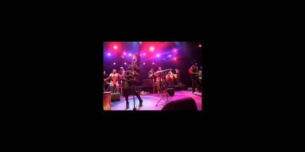 Le Jazz Festival de Gand dévoile son programme - La Libre