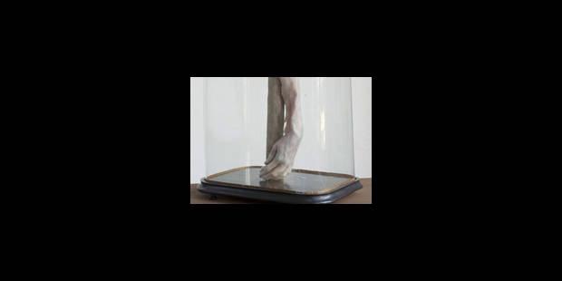 L'image de l'âme - La Libre