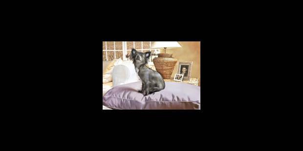 co t livraison economie. Black Bedroom Furniture Sets. Home Design Ideas
