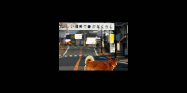 Le séisme ébranle la production industrielle et la consommation japonaises - La Libre