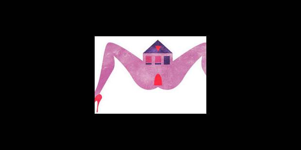 Faut-il bâtir des immeubles dédiés au sexe tarifé ? - La Libre