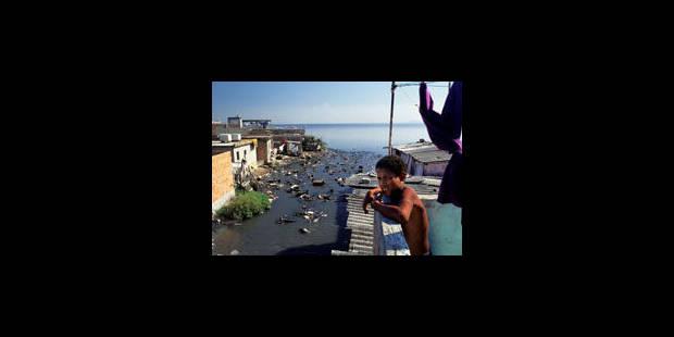 La baie de Rio à l'agonie - La Libre