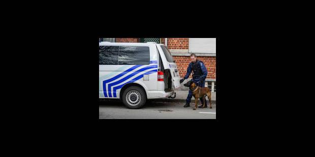 Sharia4Belgium: 48 perquisitions menées et 6 arrestations