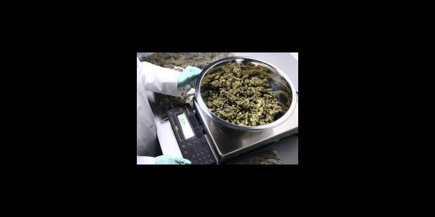 Deux fois plus de drogues retrouvées en Belgique en 2012 - La Libre